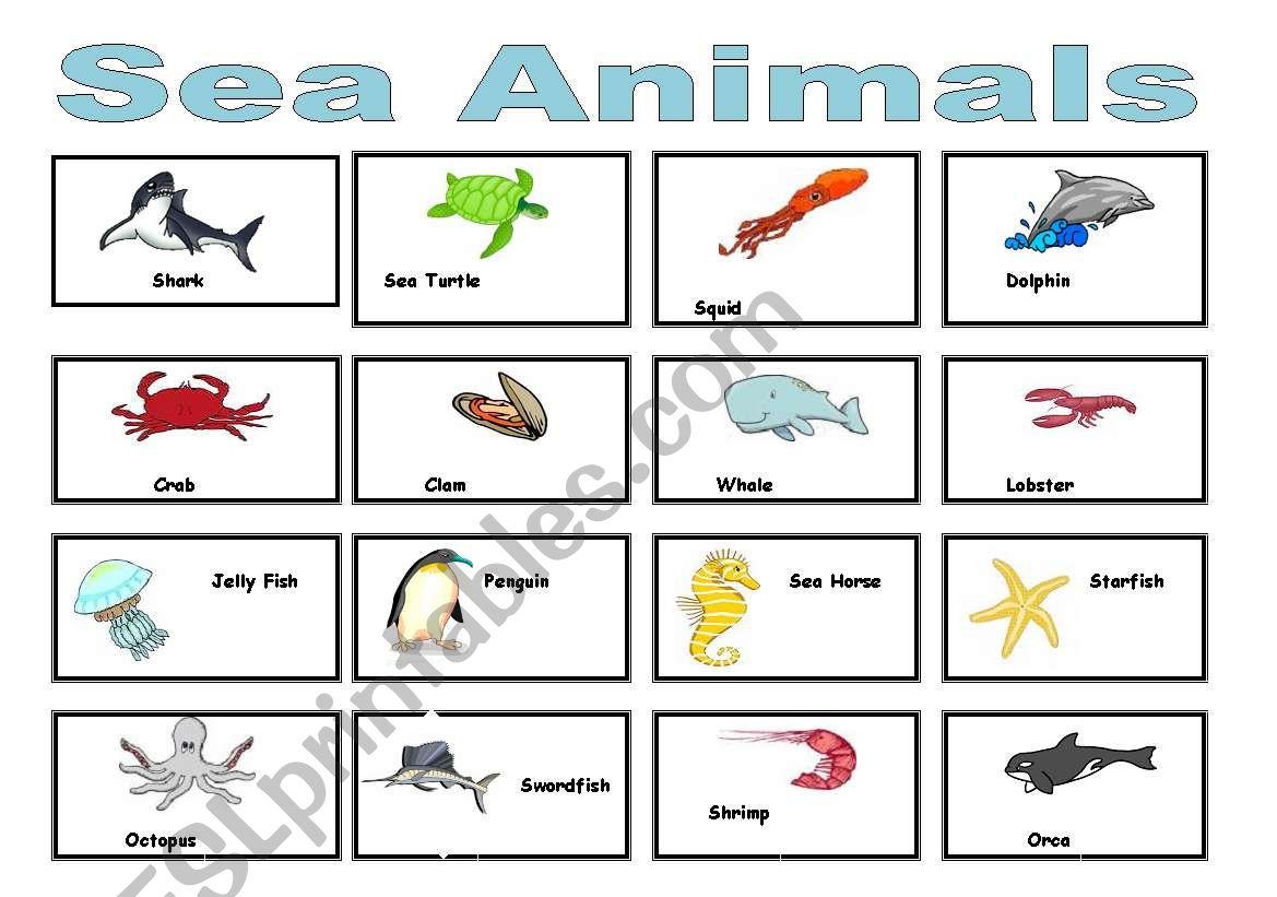 English Worksheets Sea Animals