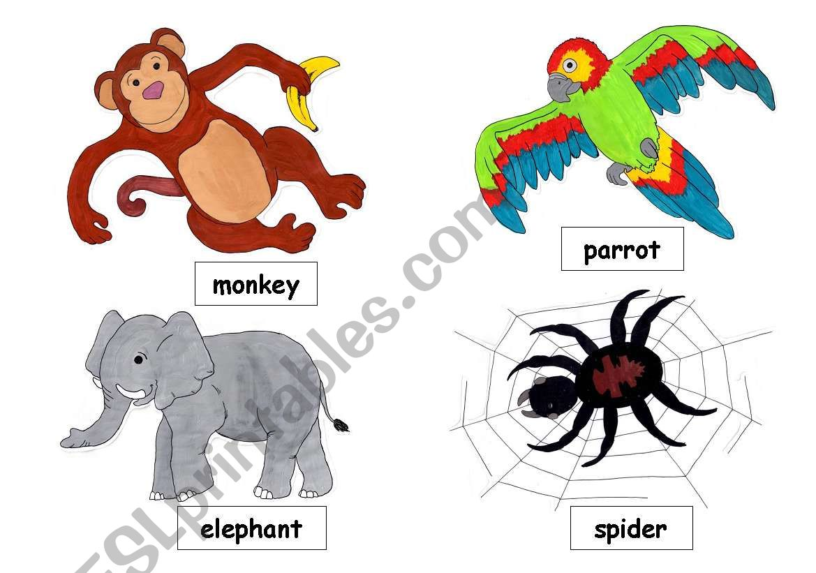 English Worksheets Jungle