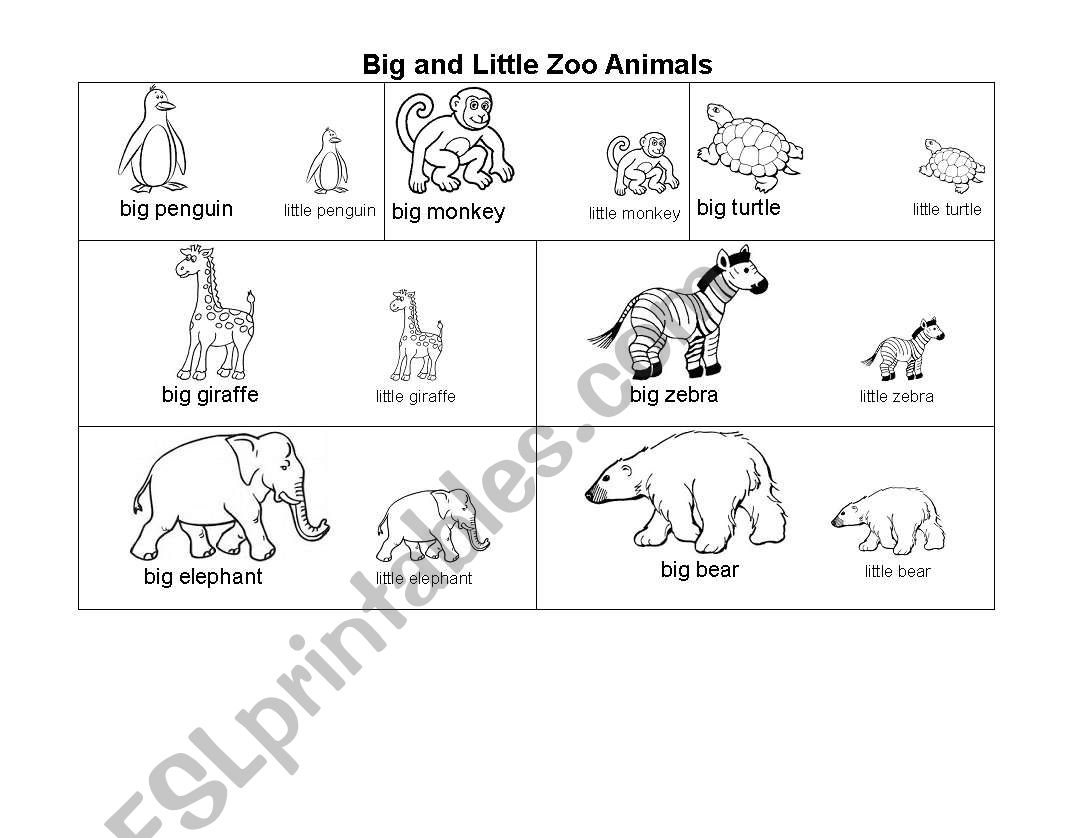Big And Little Zoo Animals