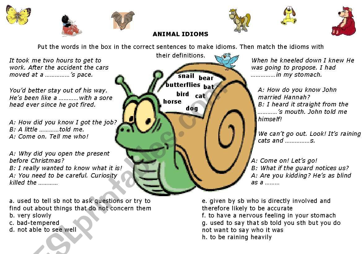 Idioms Animals