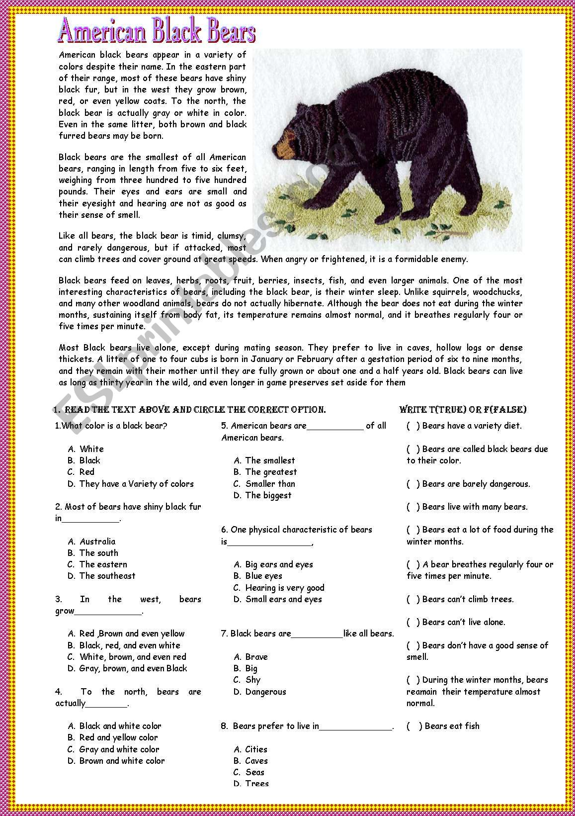 Reading American Black Bears
