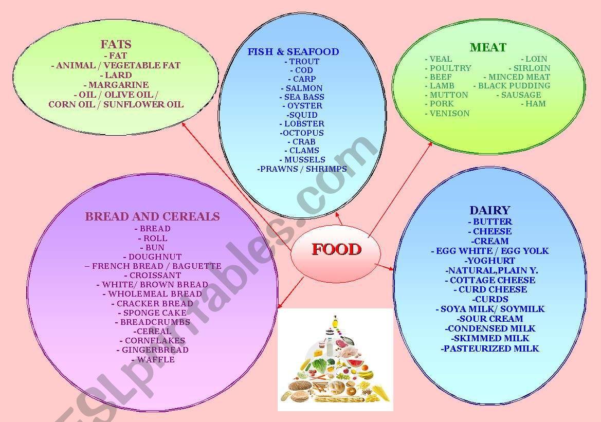 Food Mind Map