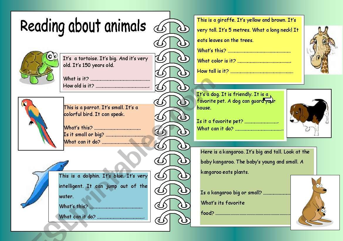 Reading About Animals