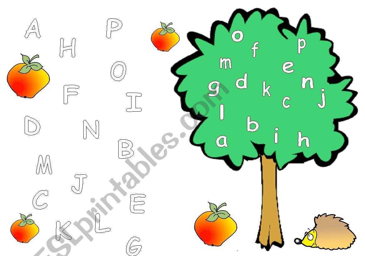 Alphabet Matching 1