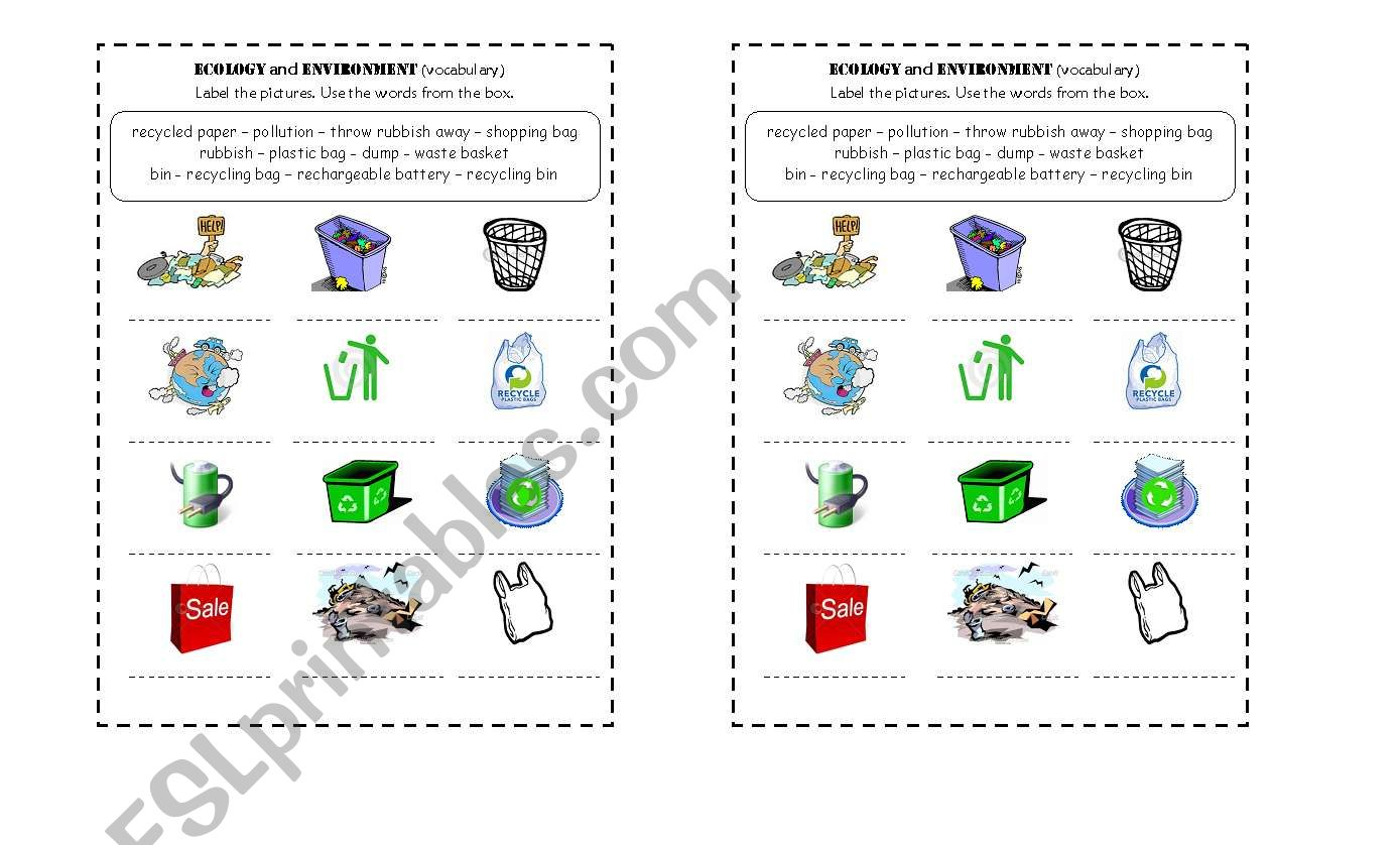 English Worksheets Ecology And Environment Vocabulay