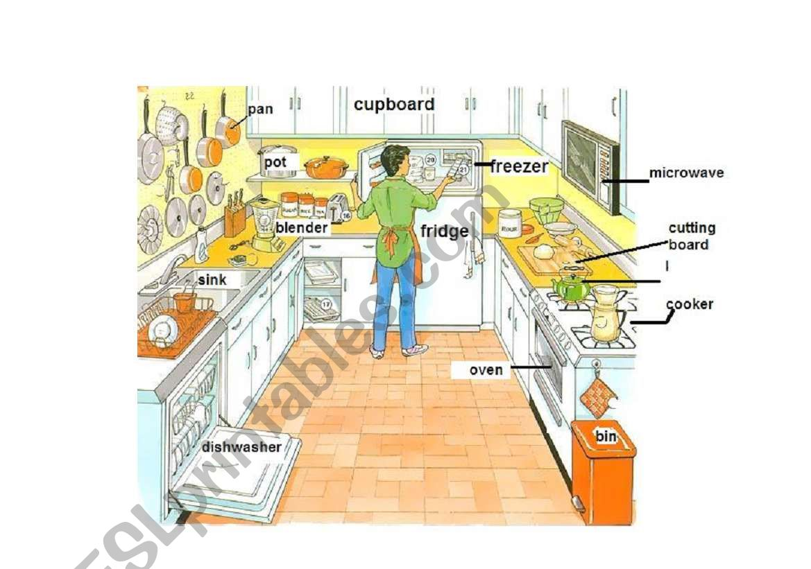 Learn The Parts Of The Kitchen