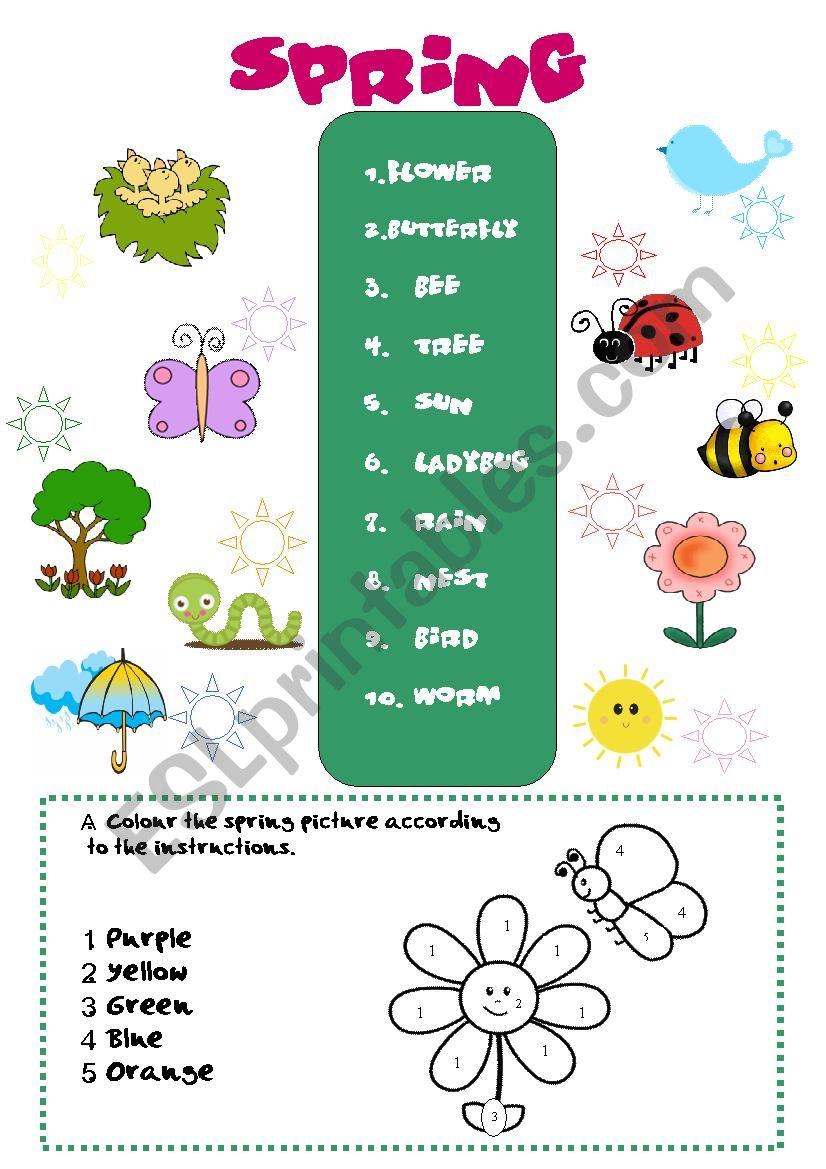 Spring Vocabulary