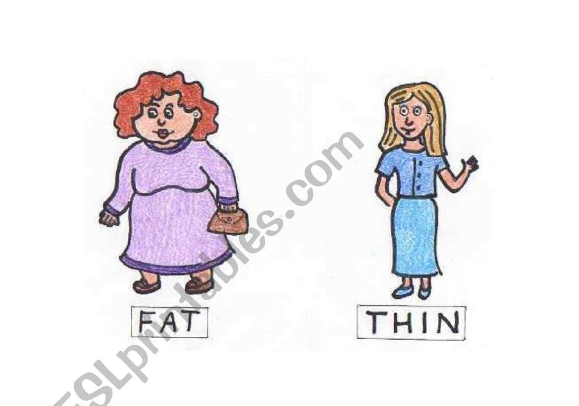 Opposites Fat