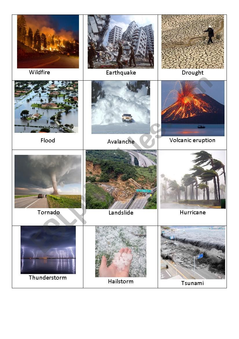 Disasters Flashcards