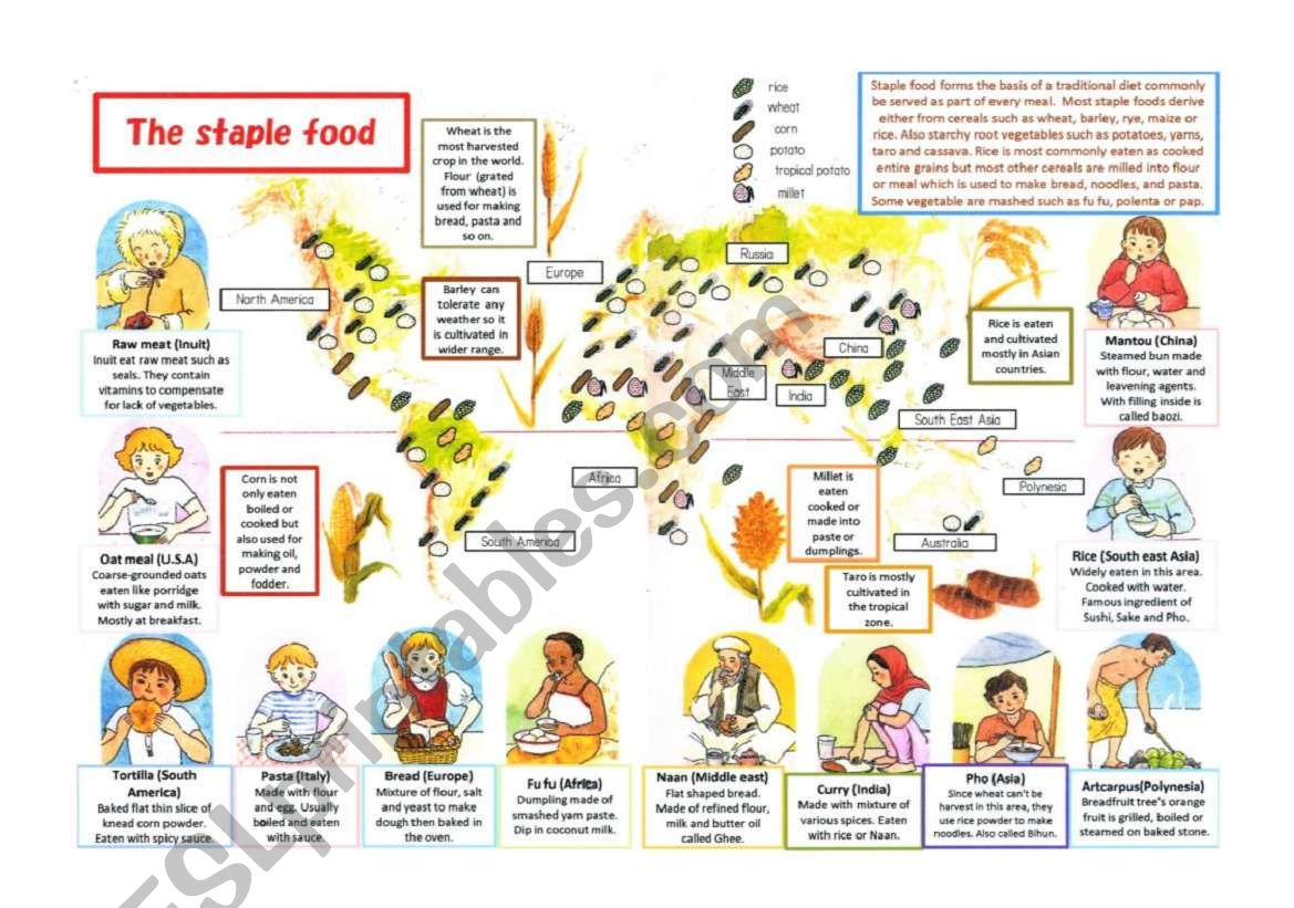 Staple Food Around The World