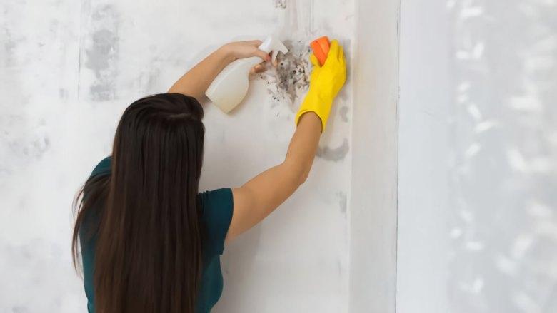 como-limpiar-paredes