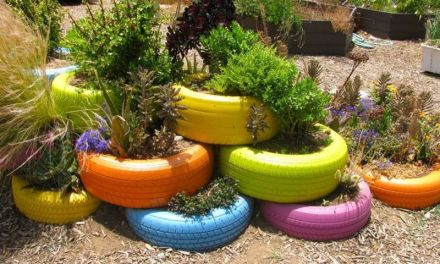 5 ideas para decorar el jardín