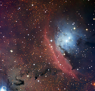 The star formation region NGC 6559