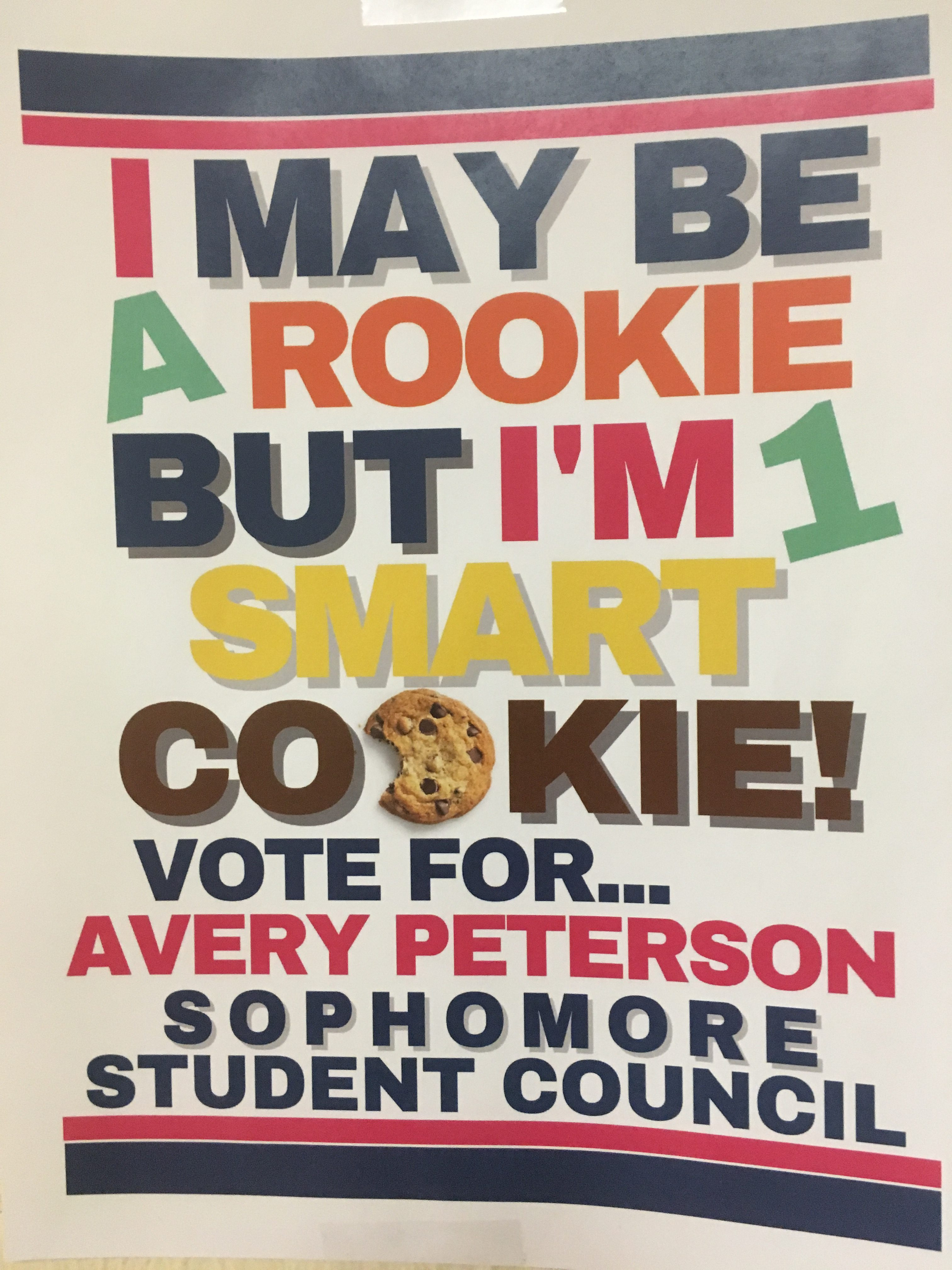 Highlights From this Year's STUCO Campaigns