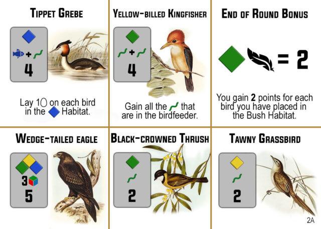 Bird Card 2A