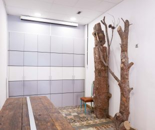 troncos descanso