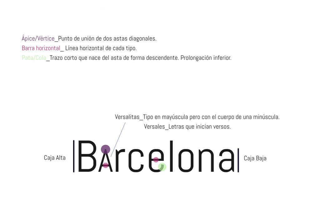 La tipografía también tiene anatomía - Blog Escola Espai