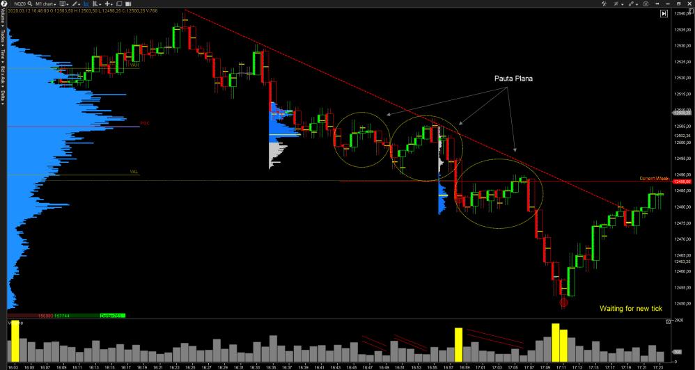 pauta-plana-trading-1