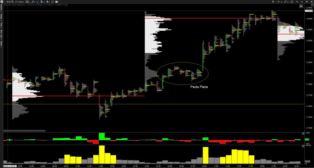 pauta-plana-trading-2
