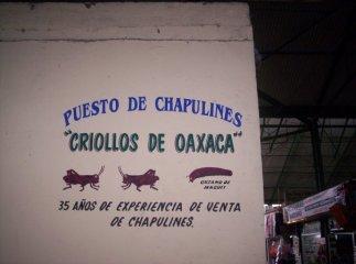 Puesto de Chapulines