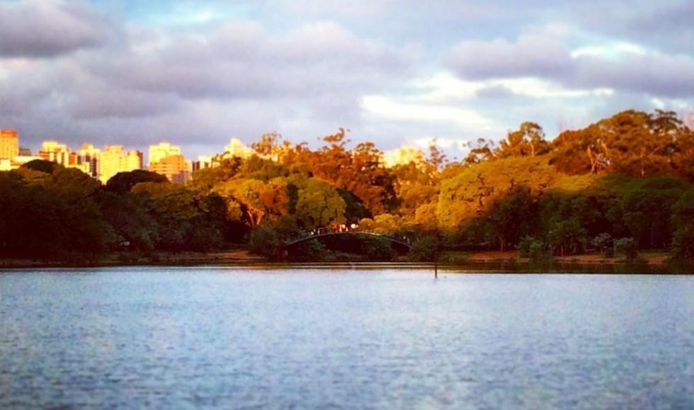 Parque do Ibirapuera na cidade de São Paulo / Brasil