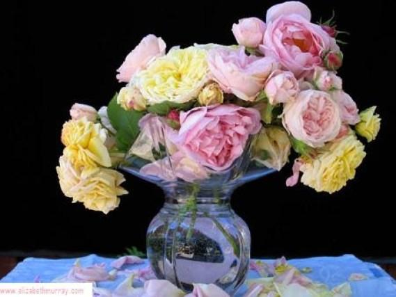 Garden flowers by Elizabeth Murray
