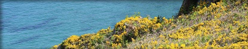 Pointe du raz Bretagne critique photo voyage