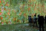 Visite des Carrières de Lumières, Les Baux de Provence par le blog culture Esperluette