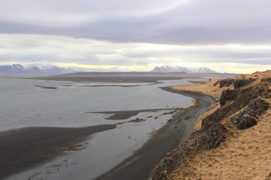 L'île des chasseurs d'oiseaux de Peter May
