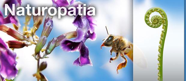 https://i1.wp.com/www.espiral108.net/wp-content/uploads/2011/03/16P_naturopatia.jpg