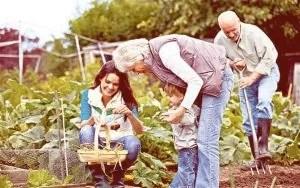 tratar jardim