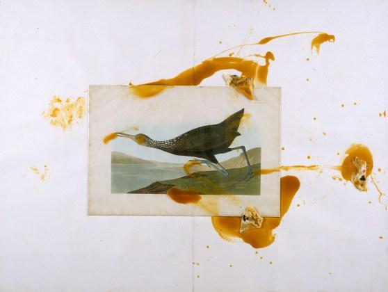 Julian Schnabel, Untitled - Running Bird (Audubon), 1990, stampa vintage, resina e stoffa su carta montata su tela, cm 161x210, Collezione privata