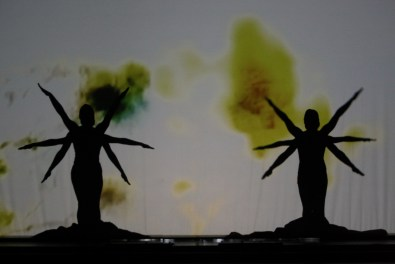 Fire Fly, Compagnia eVolution Dance Theatre