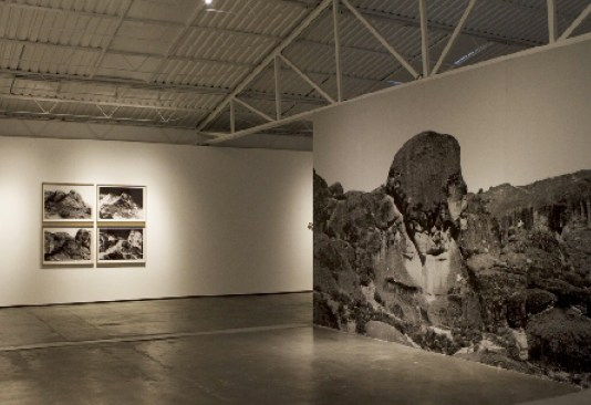 François Bucher, The Second and a Half Dimension – An Expedition to the Photographic Plateau