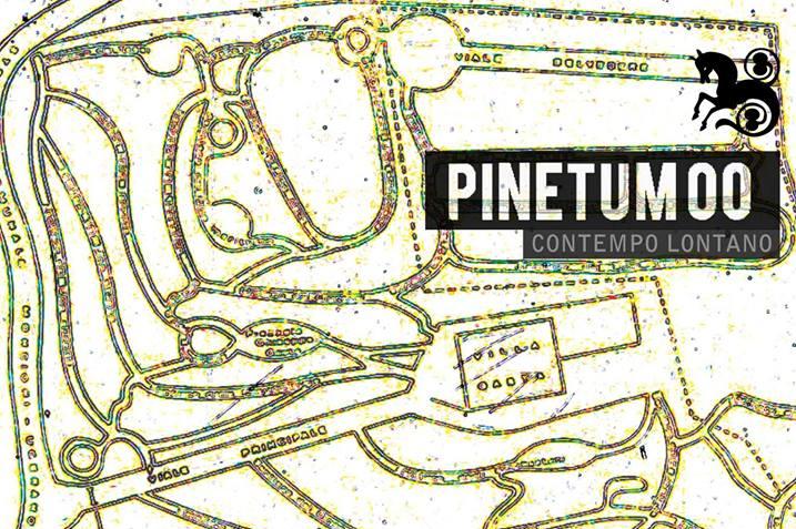 Pinetum 00. Contempo Lontano, particolare della locandina della mostra, Villa Gaeta, Moncioni, Montevarchi (AR)