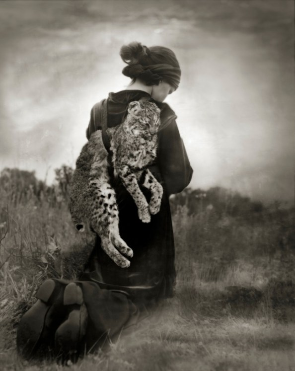Beth Moon, Journey of the Bobcat, stampa al platino palladio, cm 66x56 edizione 25 ex.