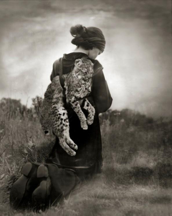 Beth Moon, Journey of the Bobcat, stampa al platino palladio, cm 66x56 edizione 25 ex.