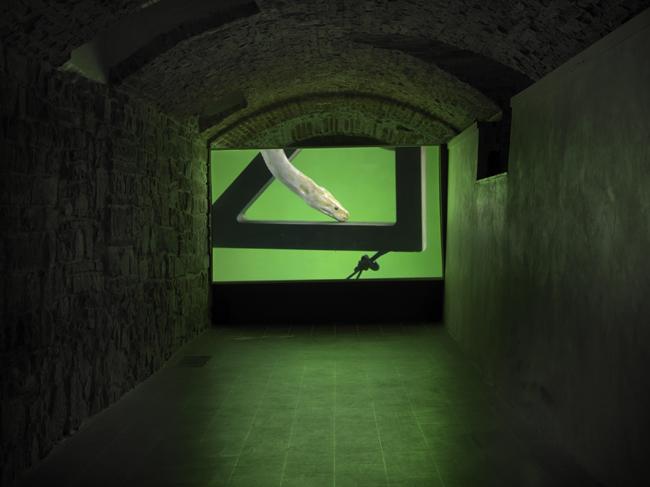 Luca Trevisani, Glaucomaleo, veduta della mostra, Museo M.Marini Firenze, 2014, ph. Dario Lasagni