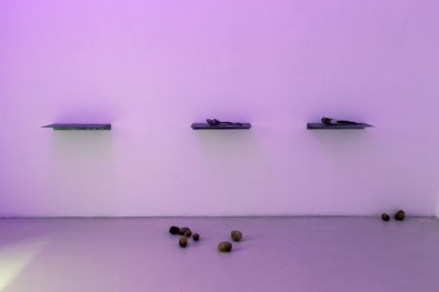 Luca Francesconi, Campo di patate, 2014, 100 potatoes of resin, pigment, variable dimensions