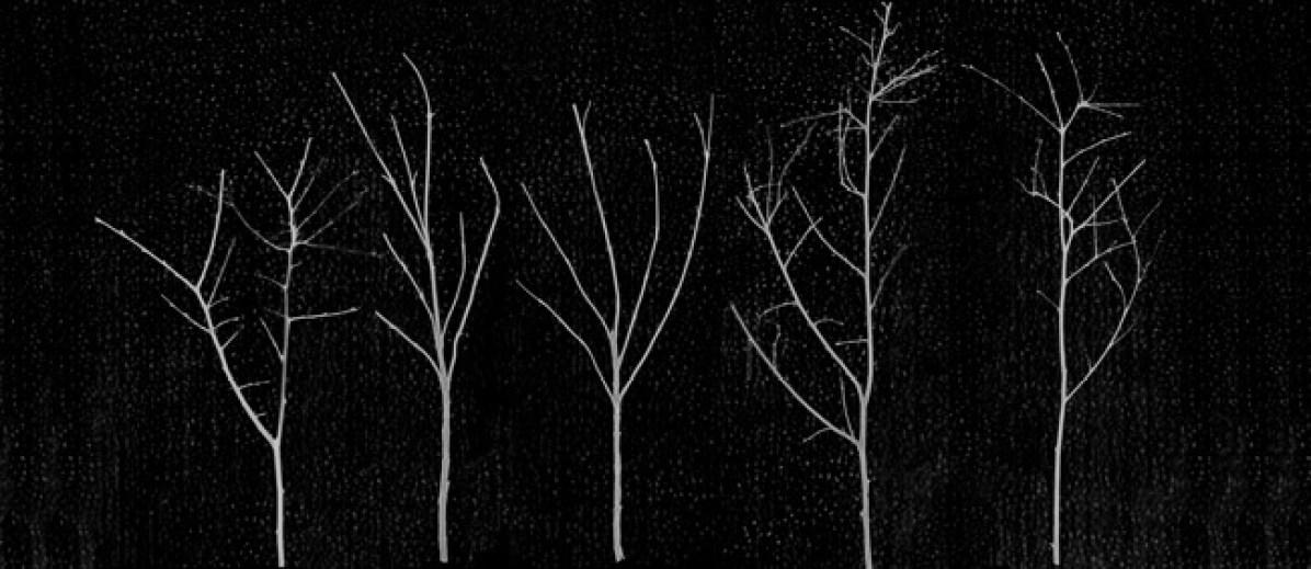 Giulio Cerocchi, serie Territori innevati, Cinque alberi notturno