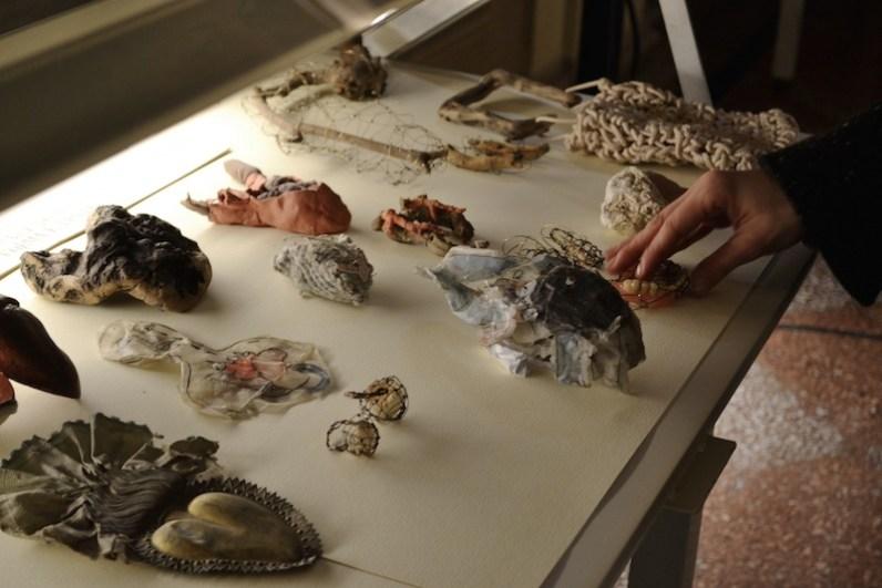 Sissi Manifesto Anatomico veduta della mostra presso Biblioteca Comunale dell'Archiginnasio ph. Ilaria Medda