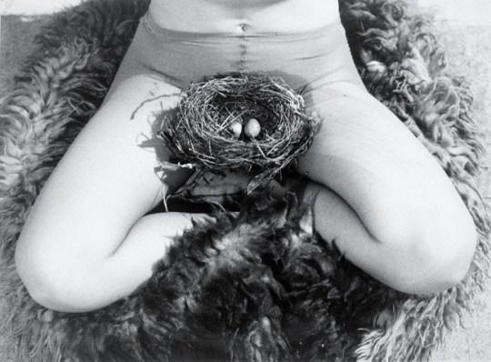 BIRGIT JÜRGENSSEN Nest, 1979 S/W-Fotografie © Estate of Birgit Jürgenssen / Bildrecht, Wien, 2015 / Sammlung Verbund, Wien