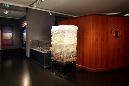 Chiara Lecca. Quod Paret, veduta della mostra, Naturkundemuseum im Ottoneum, Kassel Foto Werner Maschmann (Peli superflui)
