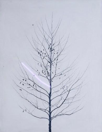 Germano Olivotto, Sostituzione 11/20, 1972, stampa fotografica e tubo al neon, 130×100 cm CSAC – Università degli Studi di Parma
