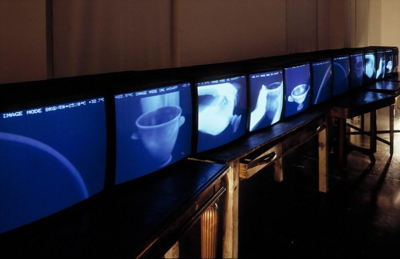 STUDIO AZZURRO, l giardino delle cose Videoambientazione per immagini a infrarossi 1992 Milano, Triennale, XVIII Esposizione Internazionale