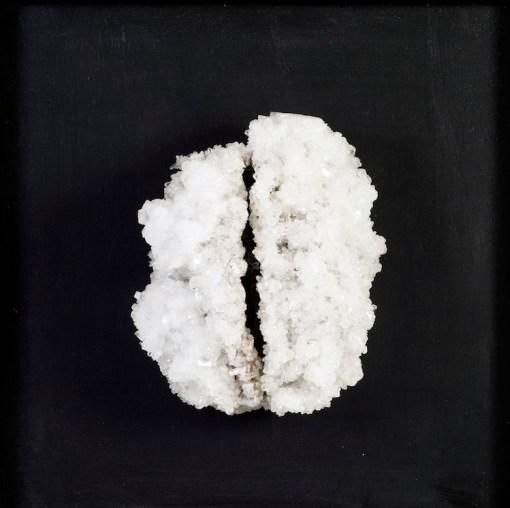 Francesca Romana Pinzari, Brain, 2016, cristalli di solfato di magnesio su struttura metallica, 50x50x20 cm Foto Andrea Veneri. Courtesy Gilda Contemporary Art, Milano