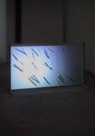Michele Spanghero, Translucide, 2009-2017, full HD stereo sound video, black and white, 14'30'' Foto Irene Fanizza