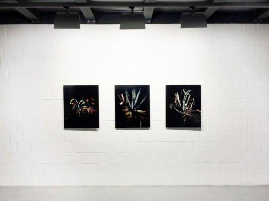 veduta della mostra Aurore Valade Mexican Interiors, courtesy Gagliardi e Domke, Torino