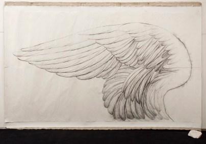 Omar Galliani, Altri voli, 1978, matita su carta, cm 150x300