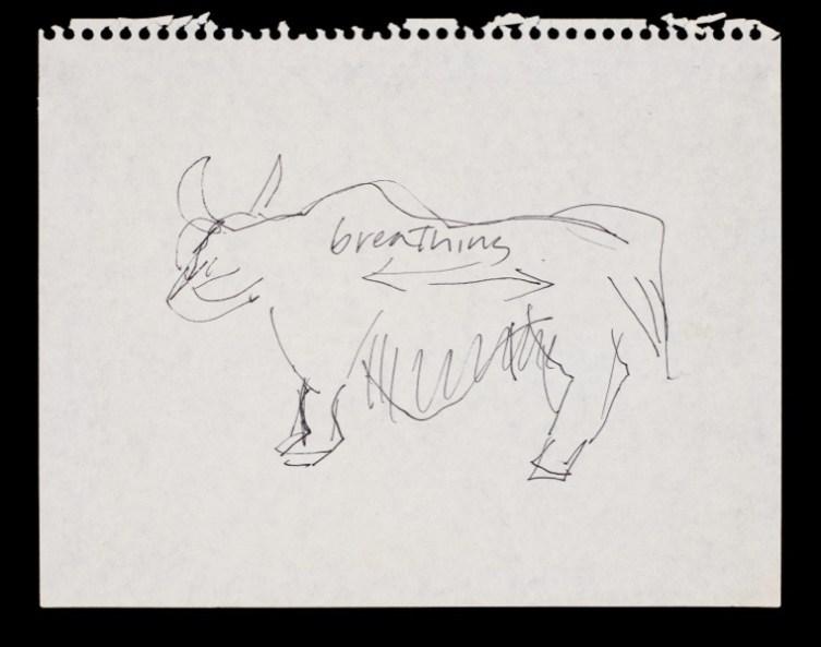 Simone Forti, Animal Study: Ox (Breathing), 1968, inchiostro su carta, 27x32.1x3.8 cm con cornice Courtesy dell'artista, The Box, Los Angeles e Galleria Raffaella Cortese, Milano
